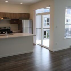 rent 1 bed apartment in abbotsford